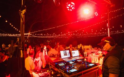 Put a New Spin on your Holiday Party with a DJ Tiger dance party!